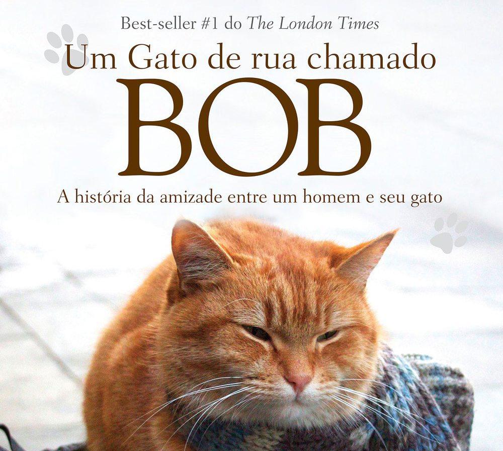 Pitacos #6: Um gato de rua chamado Bob