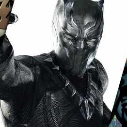 StormCast #23 | Pantera Negra